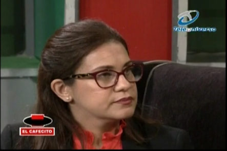 Entrevista A La Fiscal De Santiago, Luisa Liranzo – 1