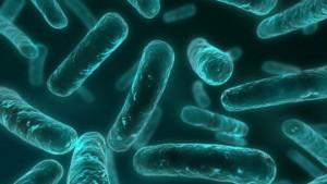 151119123455_resistencia_antibiotico_624x351_thinkstock_nocredit
