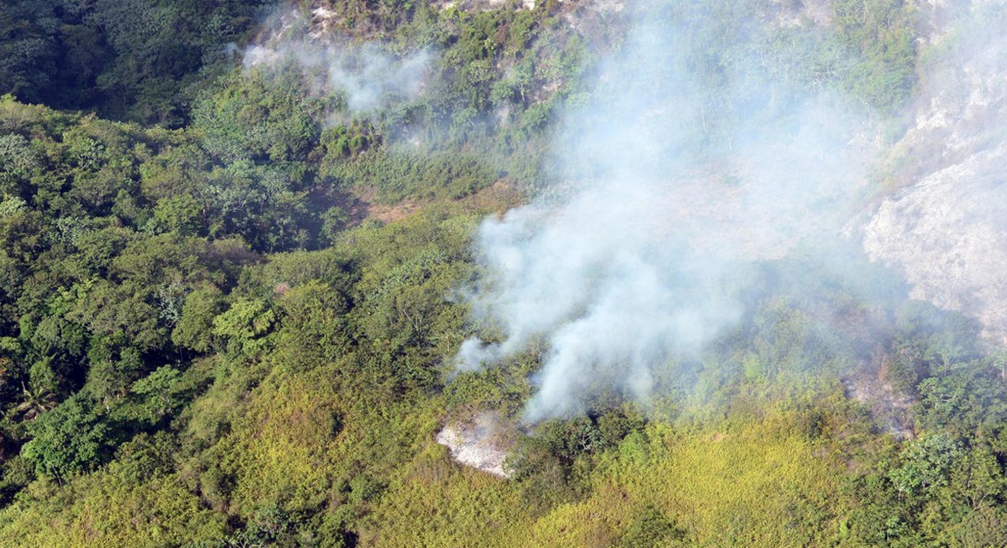 Legisladores piden investigación de fuegos forestales