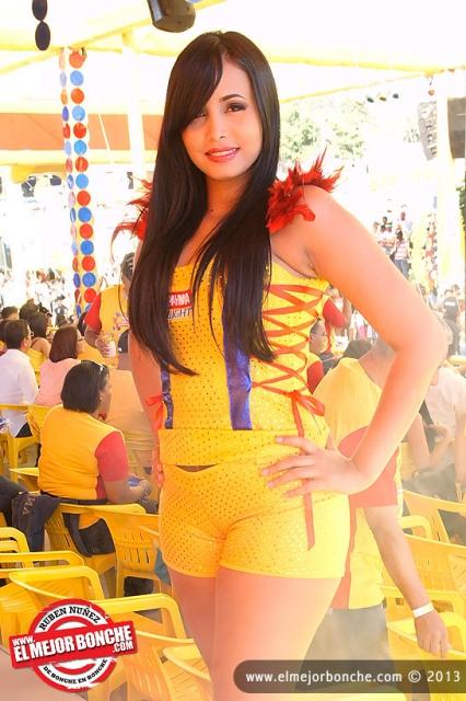 Carnaval de Santiago 1er Domingo