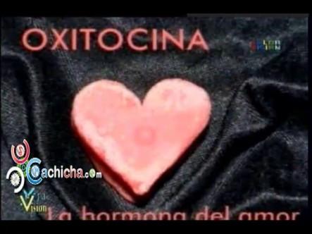La Importacia Del Amor En La Salud De Las Personas