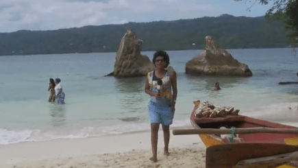 Las Ballenas Jorobadas Son Dominicanas – Tierra Caribe
