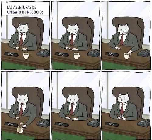 Las-aventuras-de-una-gato-de-negocios
