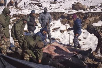 Muertos En La Montaña2