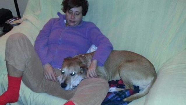 Perro Con Una Mujer Con Ebola