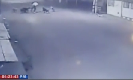 Queda Grabado En Colombia A Perros Callejeros Mientras Atacan A Mujer