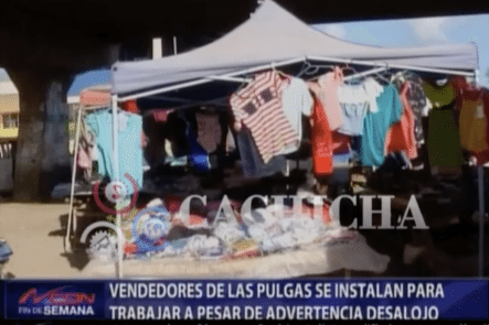 Vendedores De Las Pulgas Se Instalan Para Trabajar A Pesar De Advertencia