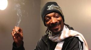 ¿Por qué la marihuana hace que el adicto hable y se mueva con dificultad?