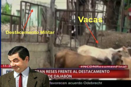 """Dajabón: Cuatreros Se Están Robando Las Reses Y Los Guardias """"No Se Dan Cuenta"""""""