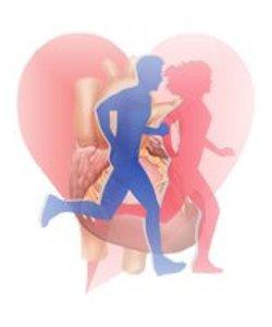 actividad-fisica-cardiovascular