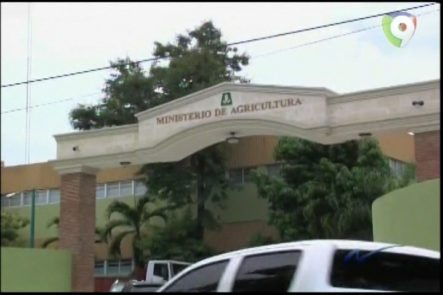 Nuria Piera: Ministerio De Agricultura Y Presupuestos Asignados