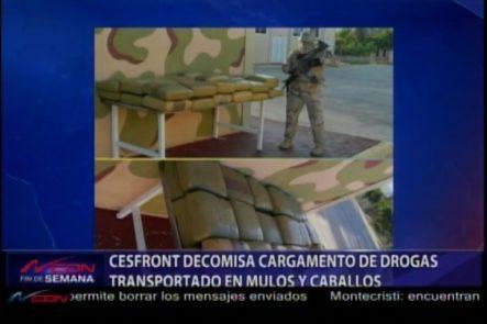 Unidad De CESFRONT Decomisa Cargamento De Drogas Transportado En Mulos Y Caballos