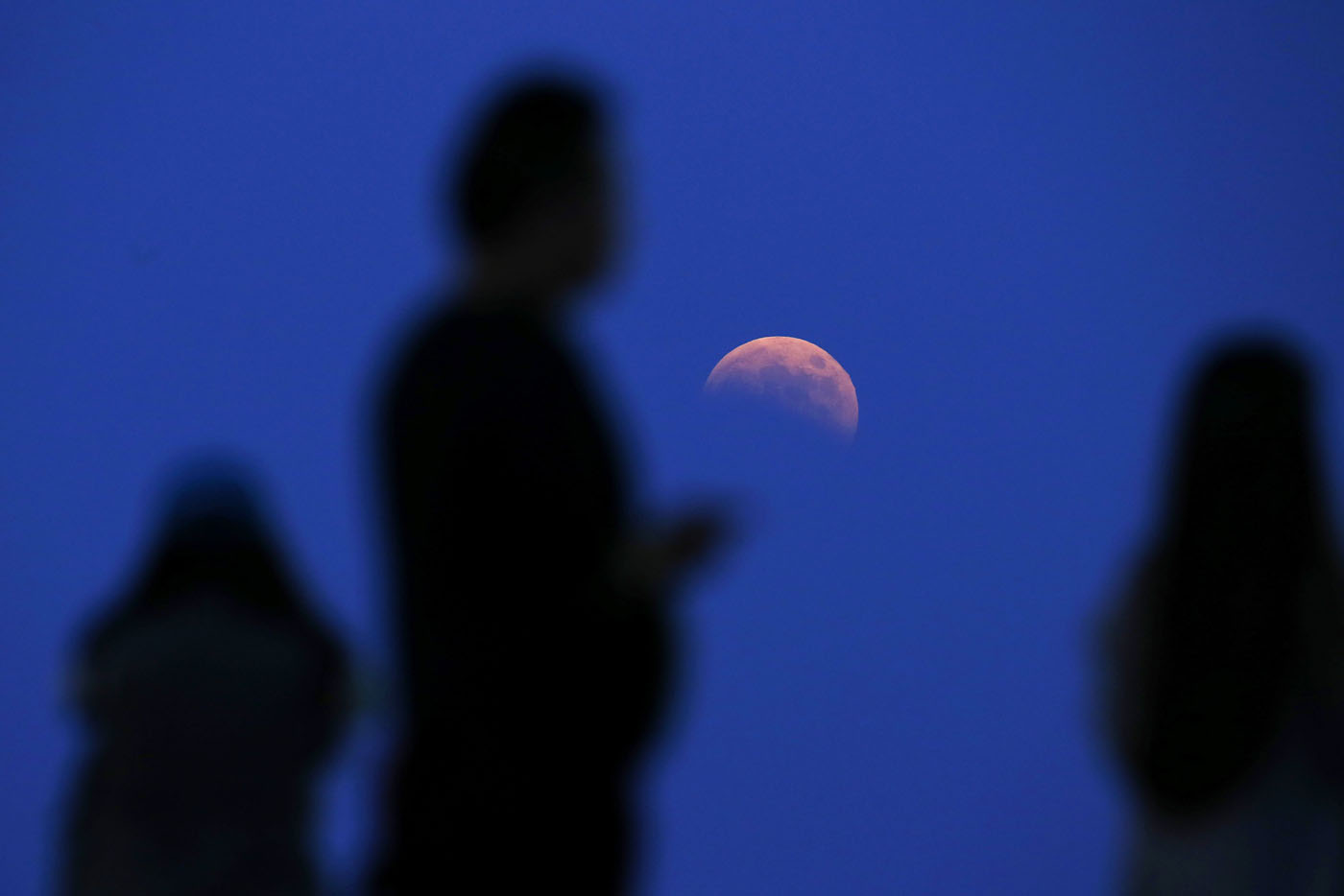 The beginning of a total lunar eclipse is seen from the Qizhong Tennis Court in Shanghai