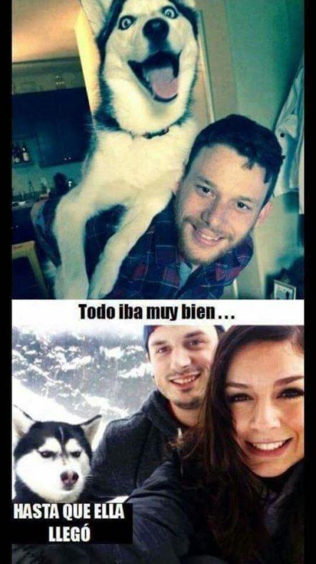 ¿La peor enemiga del perro? Jajaja #LaImagenDelDia
