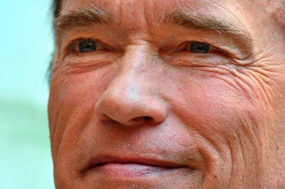 El exgobernador de California Arnold Schwarzenegger.