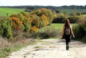 Según Estudio: Dar un paseo por la naturaleza mejora notablemente la concentración y la memoria