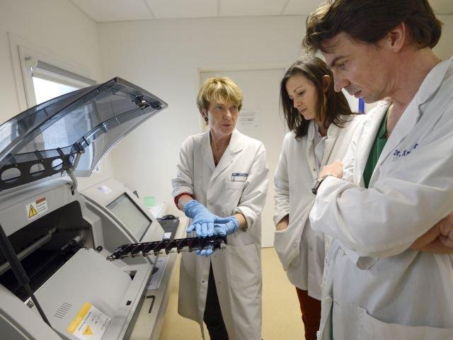 El nuevo hallazgo permitirá un mejor estudio de la metástasis que es responsable de nueve de cada diez muertes por cáncer.
