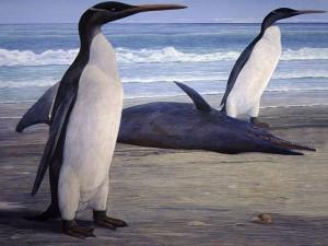 Los hallazgos fósiles representan la evidencia más antigua de estas aves en África, según estudio publicado en ´Linnean Society´.