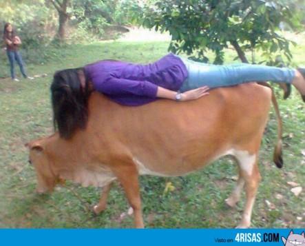 ¿Una vaca? ¡Hagamos planking!