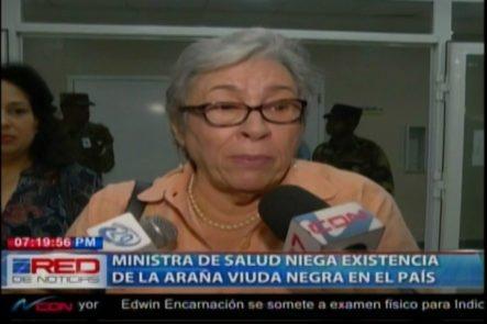 La Ministra De Salud Niega La Existencia De La Araña Viuda Negra En El País
