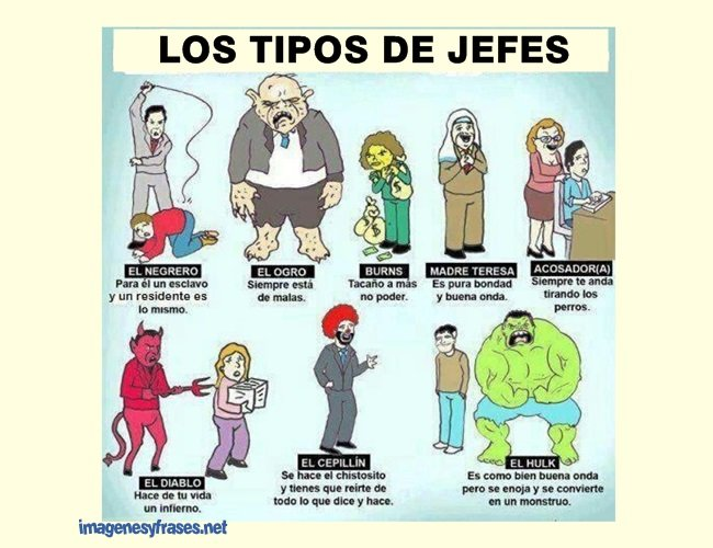 tipos-jefe