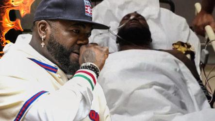 """Como Si Fuese Un Perrito Captan A Un Tigre De Bengala """"vacacionando"""" En México"""
