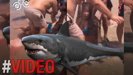 """En El Pacha Extra Salen En Defensa Del Director De La Policía Edward Sánchez """"El Solo Tiene 7 Meses"""""""