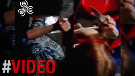 Cristian Cabrera Revela Que Antonio Taveras Quiso Encubrir Negociación Del PRM-PLD Con Cámara De Cuentas