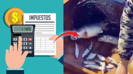 Si Desconoces ¿Qué Son Los Impuestos?, éste Video Te Lo Explica En 10 Segundos Y Sin Palabras