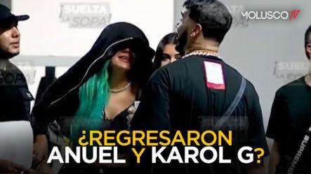 Posible Reconciliación Entre ANUEL Y KAROL G Provoca Discusión Entre ALI Y PAMELA