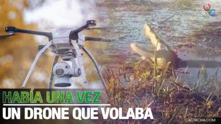 Cocodrilo Se Traga Un Dron Mientras Estaba Siendo Filmado En Florida