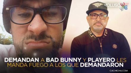 """Bad Bunny Es Demandado Por Tema """"Safaera"""", Aquí Está La Explicación Completa"""