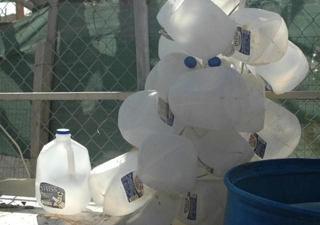 Agua De República Dominicana No Es Apta Para Humanos