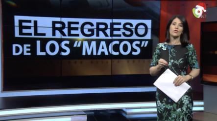 """El Informe: Las Líneas Irregulares De Las Denominadas """"MACO"""" Se Venden Como Pan Caliente"""