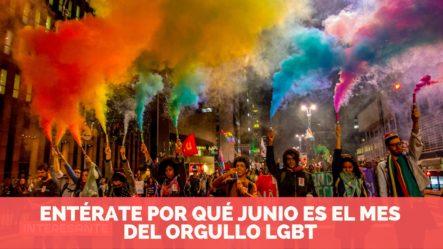 Entérate Por Qué Junio Es El Mes Del Orgullo Gay O Mes Pride