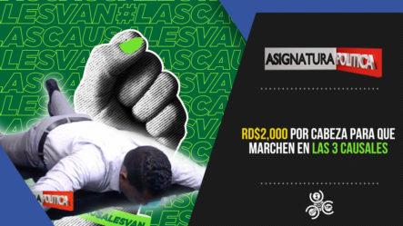 RD$2,000 Por Cabeza Para Que Marchen En Las 3 Causales   Asignatura Política