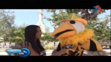 La Mascota Preferida De Los Dominicanos Amantes Del Béisbol, Jochy La Aguilita