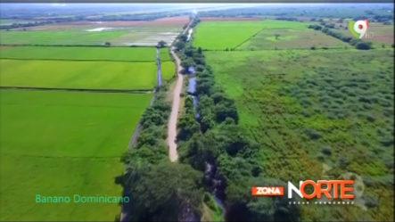 """César Hernández: """"Hay Que Recuperar El Mercado Del Banano A Nivel Internacional"""" – Zona Norte"""