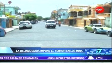 La Delincuencia Impone El Terror En Los Mina