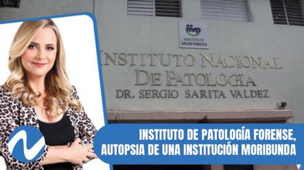 Nuria Piera: Instituto De Patología Forense, Autopsia De Una Institución Moribunda