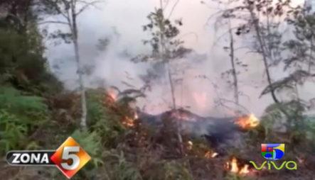 Las Manos Criminales Detrás De La Ola De Incendios Forestales Que Azota El País