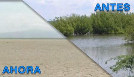 Munícipes De Barahona Acusan A La Central Azucarera Y A Block Khoury De Secar La Laguna De Cabral