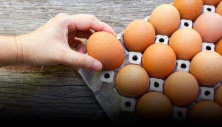 ¿El Consumo Regular De Huevos Perjudica La Salud? Dos Estudios Difieren En La Respuesta