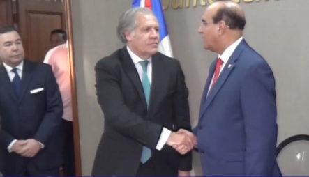 La OEA Garantiza Los Resultados De Lo Ocurrido En Las Elecciones Suspendidas