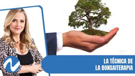 La Técnica De La Bonsaiterapia | Nuria Piera