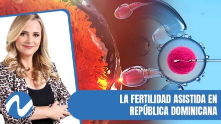 La Fertilidad Asistida En República Dominicana Sin Ley Regulatoria | Nuria