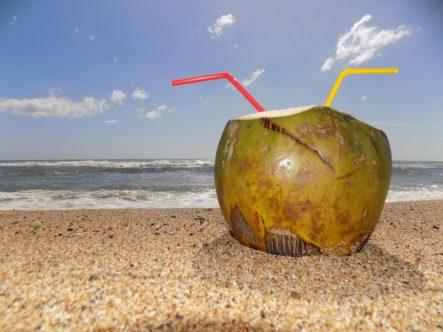 Descubre Los Increíbles Beneficios Que El Agua De Coco Tiene Para Ti