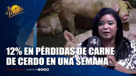 Sheila Brito Se Cuestiona Con Las Muertes Confirmadas De Los Cerdos Por Peste Porcina | Tu Tarde By Cachicha