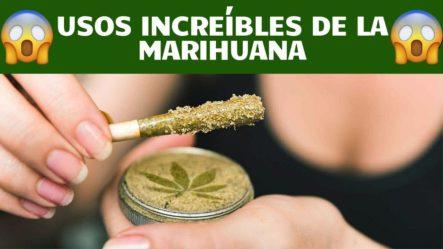 Usos Increíbles De La Marihuana