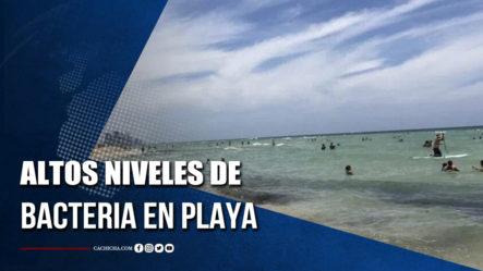 Alertan Sobre Presencia De Altos Niveles De Bacteria En Playa De South Beach